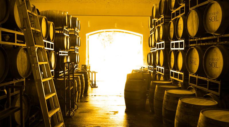 Neue Weinwelten schmecken: Die Weine Uruguays