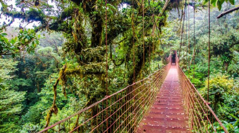 Costa Rica: Ökotourismus als Vorbild für die ganze Welt