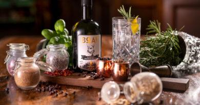 """""""Spirituose des Jahres"""": BOAR Gin holt sich das Ding"""