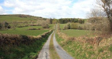 Wert irischer Whiskeyexporte überschreitet erstmals 1 Milliarde Euro