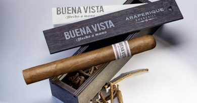 Cigarros excitantes: Buena Vista Churchill