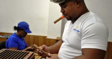 Montosa: Das perfekte Ergebnis einer kultivierten Tabakkreation
